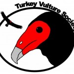 At the Turkey Vulture Society Arm-Wrestling Fundraiser
